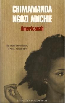 Chimamanda Ngozi Adiche - Americanah